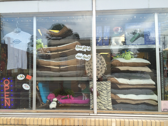 Window Display All for Paws Beds.png